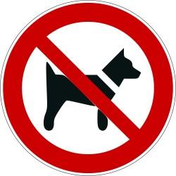 Panneau interdit aux chiens